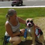 Roscoe, a Canine Good Citizen