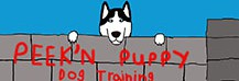 Peek'n Puppy Dog Training